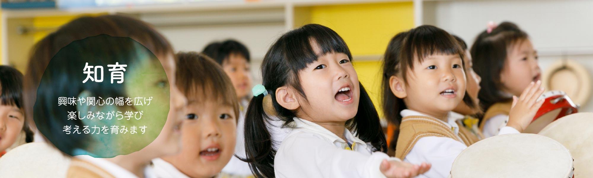 知育 興味や関心の幅を広げ 楽しみながら学び 考える力を育みます